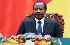 Đương kim Tổng thống Cameroon Paul Biya tái đắc cử nhiệm kỳ mới