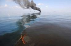 Mỹ có nguy cơ hứng chịu thảm họa môi trường tồi tệ do tràn dầu