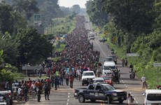 Mỹ có thể điều hàng nghìn binh sỹ tới biên giới với Mexico