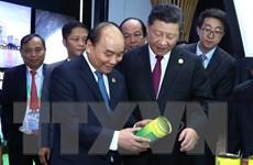 Kết quả chuyến tham dự CIIE 2018 của Thủ tướng Nguyễn Xuân Phúc