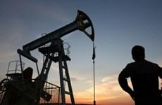 OPEC và các nước sản xuất dầu có thể giảm sản lượng trở lại vào 2019