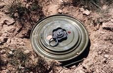 Nga vô hiệu hóa bãi mìn nguy hiểm từ thời Chiến tranh Thế giới thứ 2