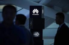 Mỹ lôi kéo các nước đồng minh tẩy chay sản phẩm của Huawei