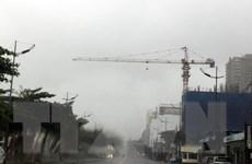 Bão số 9 quét qua Vũng Tàu: Nhiều cây xanh bật đổ, đường phố ngập nước