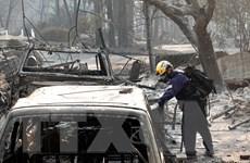 Đã khống chế hoàn toàn thảm họa cháy rừng tại bang California