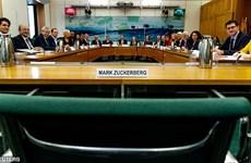 CEO Facebook bị chỉ trích gay gắt vì không đến Anh điều trần