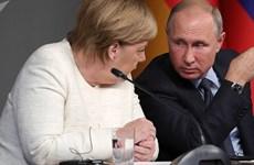 Lãnh đạo Nga, Đức thảo luận nhiều vấn đề quốc tế nóng bỏng