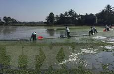 Sự cố tràn dầu ở Thanh Hóa: Cơ bản khắc phục trong khoảng nửa tháng
