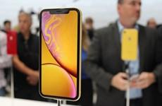 Nhiều người từ bỏ điện thoại Android để mua các mẫu iPhone mới nhất