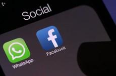 Facebook thuê các công ty công nghệ Ấn Độ ngăn chặn tin giả