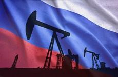 Sản lượng dầu mỏ năm 2018 của Nga đạt mức cao kỷ lục