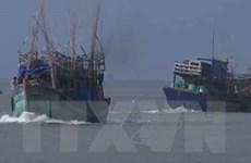 Bạc Liêu khẩn trương cứu hộ tàu cá chết máy trên biển trước bão số 1