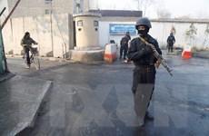 Afghanistan: Taliban tấn công làm nhiều cảnh sát thương vong