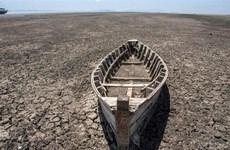 Khí thải gây hiệu ứng nhà kính kéo dài chuỗi năm nóng nhất lịch sử