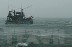 Đề nghị các nước phối hợp tìm kiếm 10 lao động của tàu cá KH 90208 TS