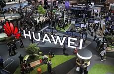Chính phủ Mỹ ép hàng loạt trường đại học không dùng thiết bị Huawei