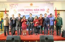 Cộng đồng người Việt ở Indonesia sum họp đón Xuân Kỷ Hợi