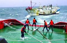 7 thuyền viên tàu bị nạn ở Hải Phòng đã được đưa vào bờ an toàn