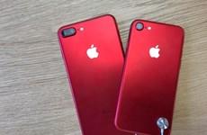 iPhone XS và XS Max đỏ sẽ ra mắt tại Trung Quốc trong tháng 2 này?