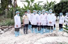 Bộ trưởng Nguyễn Xuân Cường: Không lơ là trong chống dịch tả lợn