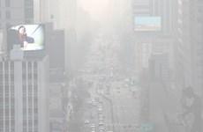 Hàn Quốc thiếu cảnh báo ô nhiễm bụi mịn tới du khách quốc tế