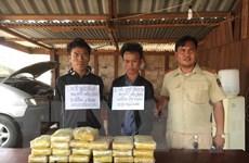 Bắt giữ 2 đối tượng vận chuyển 118.000 viên ma túy tổng hợp