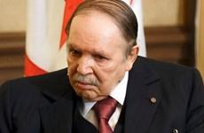 Tổng thống Algeria bổ nhiệm Thủ tướng mới và tuyên bố không tranh cử