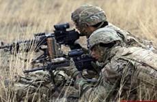 Bắt đầu cuộc tập trận chung 11 ngày giữa Gruzia và NATO