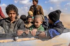 Bộ Ngoại giao Syria bác bỏ tuyên bố chung của Mỹ, Pháp và Anh