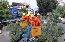 Quảng Nam khắc phục sự cố mất điện trên diện rộng do giông lốc