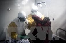 CHDC Congo: Ebola giết chết hàng trăm người trong vòng 8 tháng