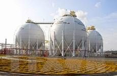 Lượng khí cấp cho cụm Khí-Điện-Đạm Cà Mau không đáp ứng đủ nhu cầu