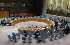 Hội đồng Bảo an LHQ sắp họp khẩn về tình hình Cao nguyên Golan
