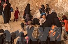 Liên quân chống IS thừa nhận hơn 1.250 dân thường chết do không kích