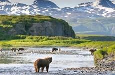 Nắng nóng bất thường lên đến 30 độ C tại bang Alaska của Mỹ