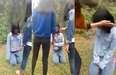 Nghệ An: Thông tin chính thức về vụ việc nữ sinh đánh bạn ở Diễn Châu