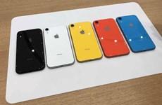 Apple giảm giá mạnh mẫu iPhone XR ở thị trường Ấn Độ