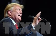 Hạ viện Mỹ yêu cầu cung cấp thông tin tài chính của Tổng thống Trump