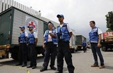 Venezuela tiếp nhận chuyến hàng viện trợ đầu tiên của Hội chữ thập đỏ