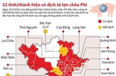 [Infographics] 22 tỉnh, thành phố hiện có dịch tả lợn châu Phi