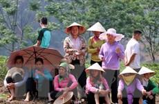 Lai Châu: Dân bản điêu đứng 5 năm liền vì bãi rác ở đầu nguồn nước