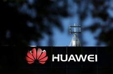 Anh cho phép Huawei tham gia hạn chế vào mạng di động 5G