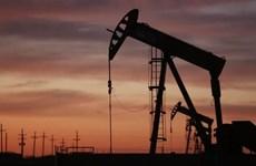 Giá dầu thô ngọt nhẹ dứt chuỗi bảy tuần đi lên liên tiếp