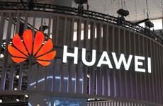 Nội các Anh đứng trước nghi kỵ lẫn nhau vì vụ rò rỉ tin Huawei