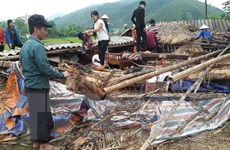 Lốc xoáy, lũ quét gây thiệt hại ở nhiều huyện của tỉnh Lào Cai