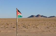 LHQ nhấn mạnh vai trò của Algeria trong vấn đề Tây Sahara