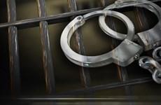 Thanh Hóa bắt bắt tạm giam hai giám đốc hối lộ đoàn thanh tra