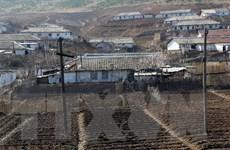 Hàn Quốc vẫn xúc tiến viện trợ lương thực cho Triều Tiên