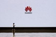 Huawei có phản ứng đầu tiên với lệnh cấm Android của Google