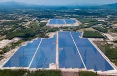 Nhà máy điện Mặt Trời đầu tiên tại Bình Định hòa lưới điện quốc gia